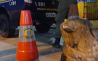 PRF flagra motoristas praticando crime ambiental e resgata bicho-preguiça na BR-101