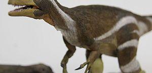 Pesquisadores apresentam fóssil de dinossauro encontrado no Ceará