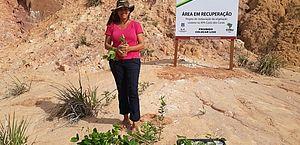 Iniciativa de professora da Ufal visa recuperar áreas que sofrem erosão