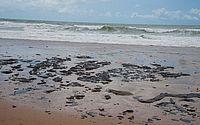 Bahia decreta estado de emergência por manchas de óleo no litoral