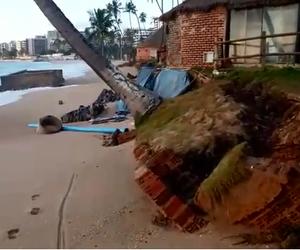 Coqueiro ameaça cair com avanço do mar na Praia de Jatiúca