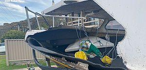 Baleia salta em cima de barco e jovem fica em estado crítico na Austrália