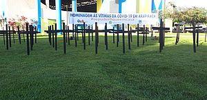 Cruzes são colocadas no Bosque das Arapiracas em homenagem às vítimas da Covid-19