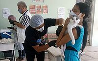 Segunda etapa da vacinação contra raiva imuniza cães e gatos no próximo sábado