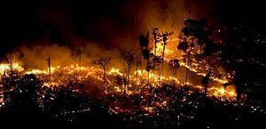 Amazônia registra novo aumento de queimadas em julho