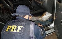 PRF prende homem com veículo roubado e documento falso na BR-316