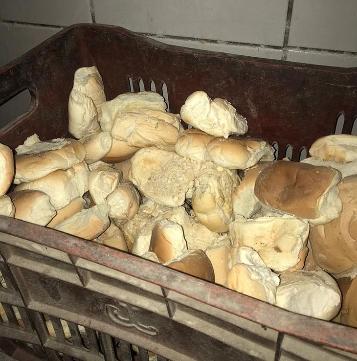 A padaria, localizada na Ponta Verde, apresentou sérias irregularidades sanitárias