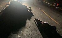 Mãe e filho atropelam cavalo e morrem em rodovia