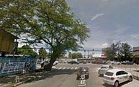 Árvore 'inclinada' sobre via no Farol preocupa internautas