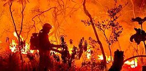 PCGO identifica suspeitos de iniciar queimada na Chapada dos Veadeiros