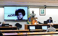 Assunto foi debatido na comissão externa sobre ações de combate ao coronavírus