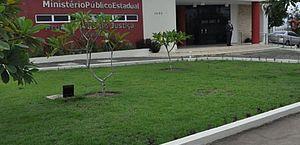 MP vai investigar qualidade dos kits alimentares distribuídos pela Prefeitura de Arapiraca