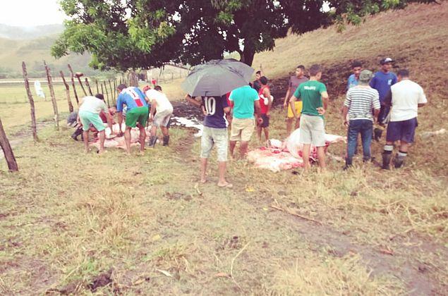 Durante chuva forte, raio mata três bois em sítio de Santana do Mundaú