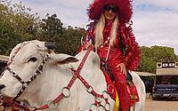 Domingo Show: Programa traz a amizade inusitada ente uma senhora e seu cavalo