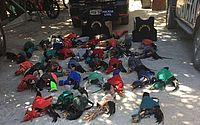 Polícia desmancha ponto de rinha de galos e resgata 42 aves no Ceará