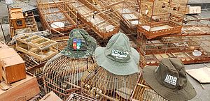 IMA resgata mais de 850 animais em operações conjuntas da mata atlântica à caatinga