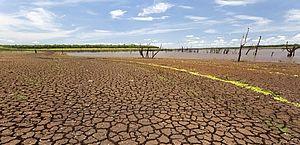 Seca atinge o campo, e safra de grãos tem quebra de 10 milhões de toneladas