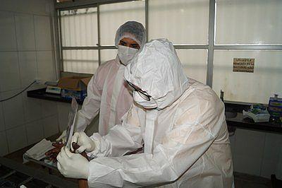Papiloscopistas durante coleta de digitais de corpos não identificados