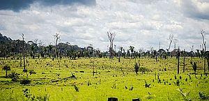 Militares voltarão a atuar na Amazônia para tentar conter desmatamento