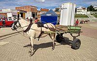 E+ Geladeira nova: 280 alagoanos são contemplados em campanha da Equatorial
