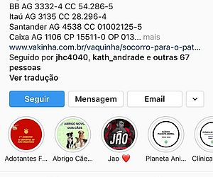 Justiça determina bloqueio e desativação de conta do Pata Voluntária no Instagram