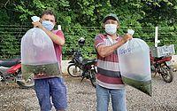Agricultores familiares de Alagoas estão sendo beneficiados com as doações de alevinos