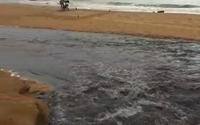 Vídeo: esgoto jorra na areia da praia de Jatiúca após chuvas