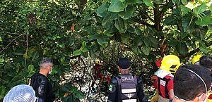 Aracaju: avião de pequeno porte cai em região de mangue; piloto evitou queda em área residencial