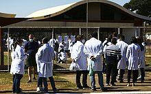 Governo define novo valor mínimo da bolsa para médicos residentes